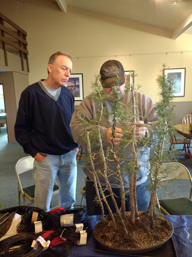 Brian_and_Lee_working_on_Brian's_atlas_cedar_forest