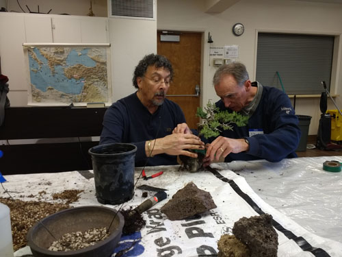 Phillip_and_Brian_working_on_a_root_over_rock